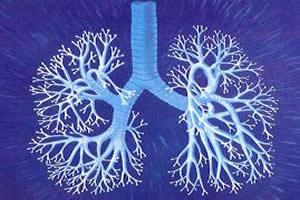Fisioterapia respiratoria para nuestros bebés